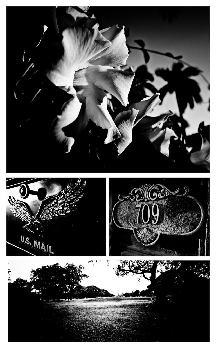 Ricoh, GRD4, Street Photography, GR, GRD3, GRD3, GX200, ricoh gr review, ricoh gr, photos, images, documentary, street, candid, portrait, snap, photography, ricoh gr, ricoh, color, grd2, grd3, grd4, grd5, black and white, pentax, pentax-ricoh, images, pictures, daido, moriyama, jorge, ledesma, gr, review,ricoh gr revisão, ricoh gr, imagens, documentários, rua, revisão,RICOH GR recenze, RICOH GR, obrázky, dokumentární, ulice, upřímný, portrét, fotografie,ricoh gr revisione, ricoh gr, immagini, documentari, via, schietto, ritratto, fotografia,Ricoh GR recension, Ricoh GR, bilder, dokumentär, gata, uppriktig, porträtt, fotografi,Ricoh GR examen, Ricoh GR, images, documentaire, rue, candide, portrait, photographie,Ricoh gr gennemgang, Ricoh GR, billeder, dokumentar, gade, åbenhjertig, portræt, fotografering,Ricoh GR recenzja, ricoh gr, zdjęć, filmów dokumentalnych, ulica, szczery, portret, fotografia,Ricoh GR Bewertung Ricoh GR, Bilder, Dokumentarfilm, Straße, offen, Porträt, Fotografie,理光GR審查,理光GR,圖片,紀錄片,街道,坦誠,肖像,攝影,リコーGR見直し、リコーGR、画像、ドキュメンタリー、ストリート、スナップ写真、ポートレート、写真、ricoh gr revisão, ricoh gr, imagens, documentários, rua, cândido, retrato, fotografia,icoh gr pagsusuri, ricoh gr, mga larawan, dokumentaryo, kalye, tapat, portrait, photography,