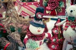 fuji-xe1-christmas-7